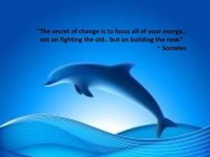Dolphin Socrates quote