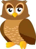 16012750-owl