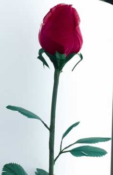Feather_rose_red_400