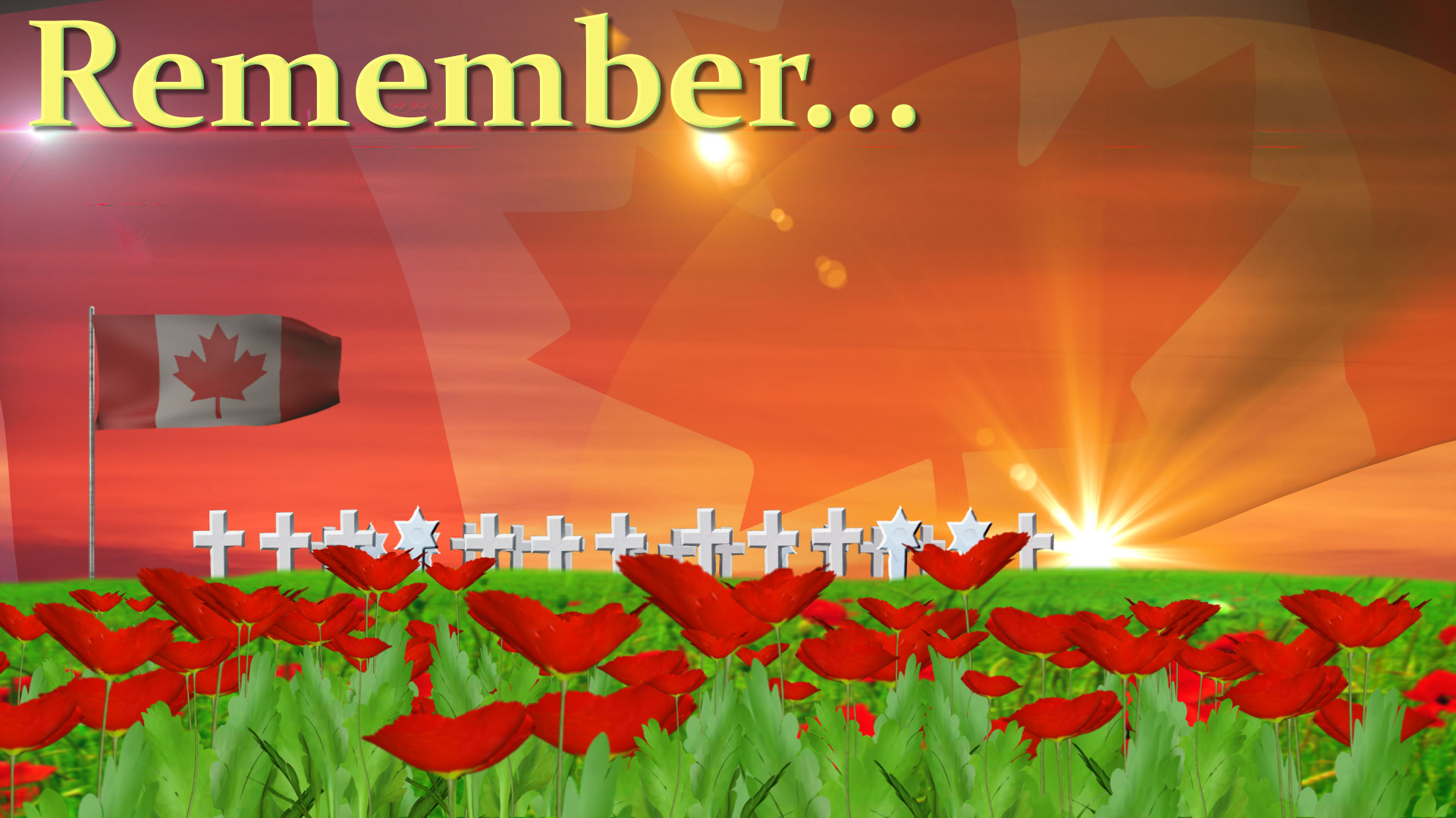 Remembrance Day 2016 | A Peaceful Way