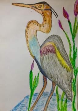 heron still